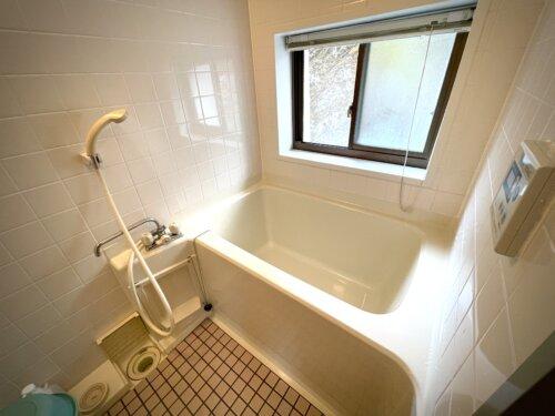 コテージの浴室シャワーと浴槽