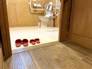 バリアフリーで段差のないトイレの出入り口とトイレ